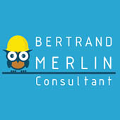 Bertrand Merlin Consultant